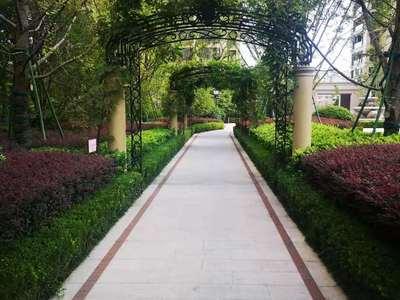 和聚园 急售 精致两室豪华装修 品牌家具 小区环境优雅