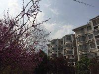 出租东洲花园3室2厅1卫118平米2700元/月住宅