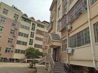 大陈紫荆公寓 瑞云路靠江位置 两室两厅带厨卫 户型好江景房 目前出租年后到期