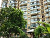 大陈镇中心明珠广场149平证齐楼层好性价比高120万