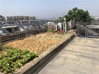 北苑稀缺全新瓷砖楼道,双阳台户型,三层使用400平左右,2个露台空中花园 送车位