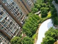 金城二期高层观景 能俯瞰公园一号 视野 采光均优胜 带车库满两年 阳台扩建
