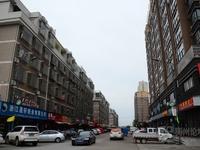 诚售楼西塘村高层住宅108平,近商贸城5期、浙四医院,周边轻轨在建