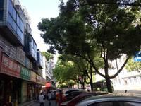 出售香山路沿街一间四层180平米285万商铺垂直