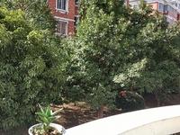 丹溪四区时代花园