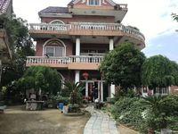 翠堤雅苑对面 黎明湖别墅小岛对面 独栋千平花园 真正的稀有房