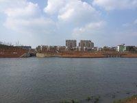 江东街道后张新村43幢3单元,村东首,江景房,临江滨公园一步之遥