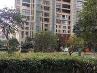 中都御金嘉园中间套三房大客厅 有赠送阳台 南北通透户型好 房子新交通方便苏溪一小